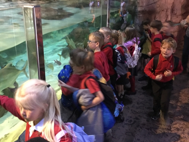 Sealife Centre